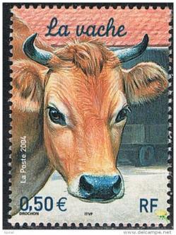 09 3664 24 04 2004 vache