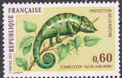 11 1692 06 11 1971 cameleon 1