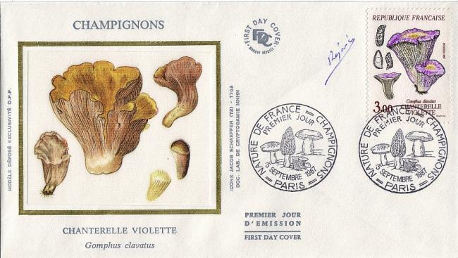 11 2489 05 09 1987 chanterelle violette