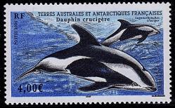 141 440 2006 dauphin