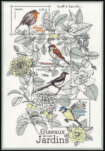 15 10 06 2018 les oiseaux de nos jardins