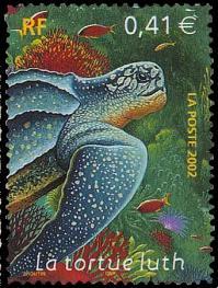 17 3485 05 06 2002 animaux marins