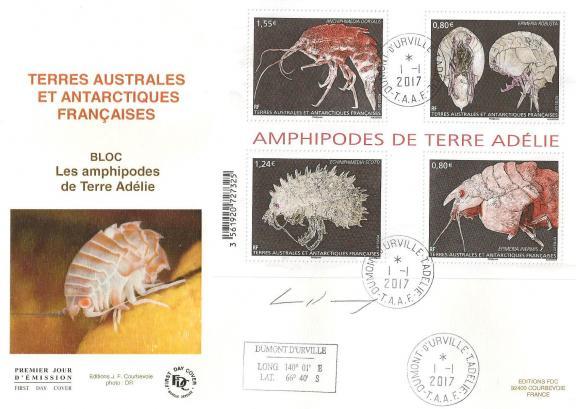 2 01 01 2017 amphipodes de terre adelie