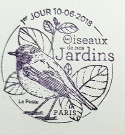 22 10 06 2018 les oiseaux de nos jardins mesange copie