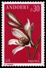 26 229 07 07 1973 fleur des vallees d andorre le lis
