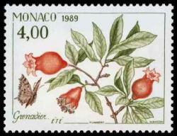 30 1682 1989 grenadier