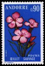 30 231 07 07 1973 fleur des vallees d andorre l oeillet sauvage 1
