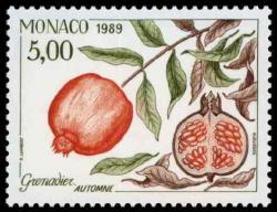 31 1683 1989 grenadier