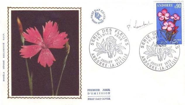 31 231 07 07 1973 fleur des vallees d andorre l oeillet sauvage