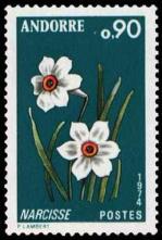 32 236 06 04 1974 fleur des vallees d andorre le narcisse