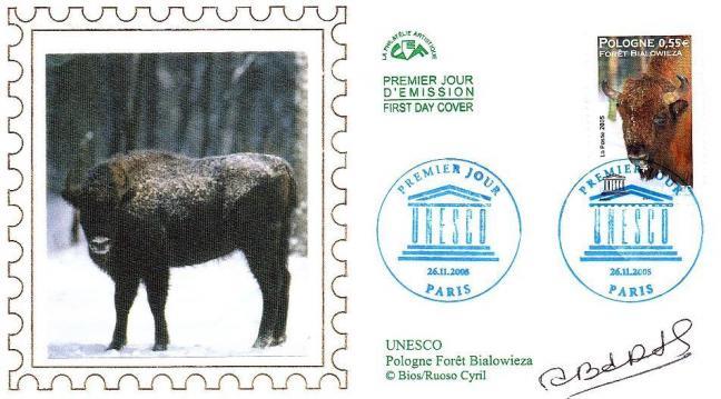 39 132 26 11 2005 foret de bialowieza pologne