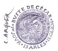 42 4836 15 02 2014 buste de cesar