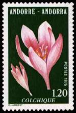 43 247 10 05 1975 fleur des vallees d andorre le colchique1