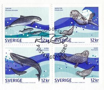 45 13 05 2010 la vie marine