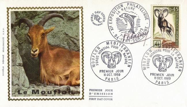 48 1613 11 10 1969 mouflon