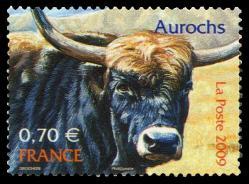 55 4374 20 06 2009 aurochs