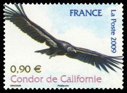 57 4375 20 06 2009 condor de californie