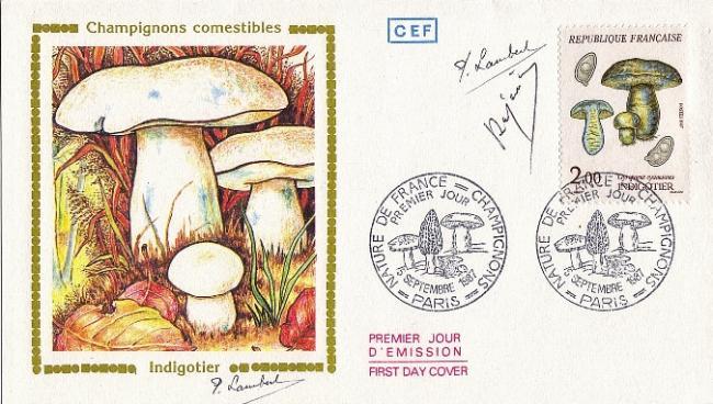 78 2488 05 09 1987 indigotier