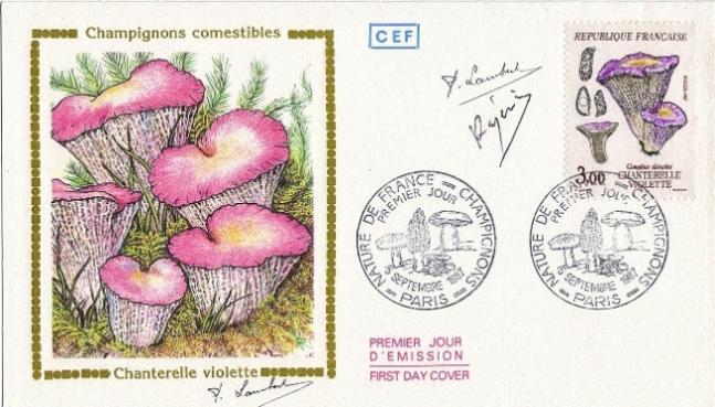 80 2489 05 09 1987 chanterelle violette