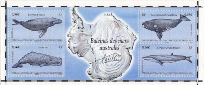 80 587 a 590 01 01 2011 baleine