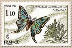 81 2089 31 05 1980 papillon graellsia isabellae